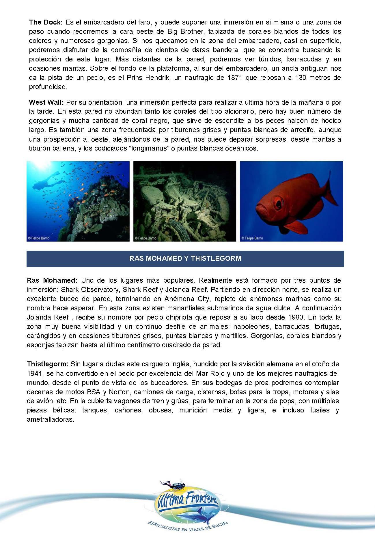 mr2019-dossier_Página_05