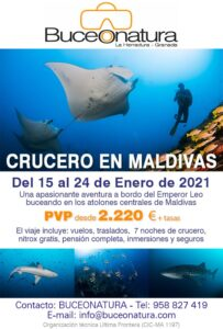 Cartel Maldivas 2021